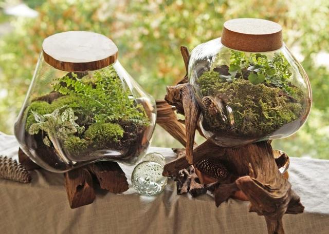 Kompozycje w szkło-korzeniach -lasy zamknięte w  szklanych misach wylanych na drewniane konary.