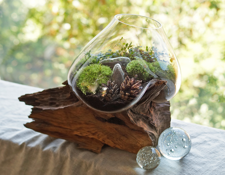 zielona kropla w szklanej misie zastygłej na drewnianym konarze